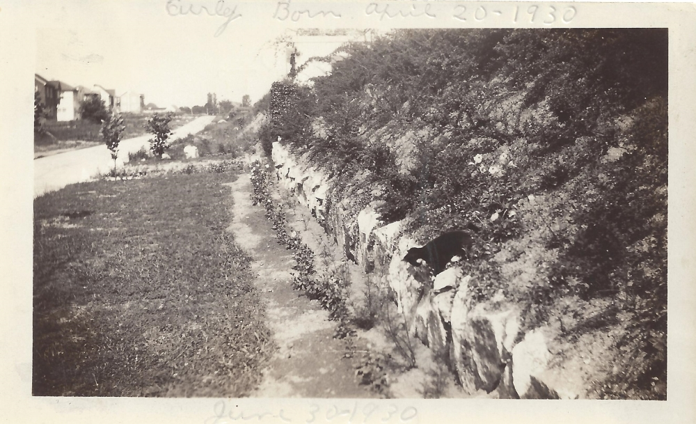 610 Sussex 16