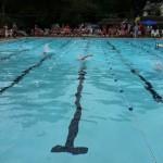 pool lap