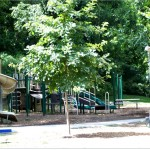 wiltondale playground